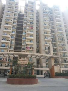 Gallery Cover Image of 890 Sq.ft 2 BHK Apartment for rent in Noida Extension for 9500