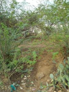 2090 Sq.ft Residential Plot for Sale in Poonthandalam, Chennai