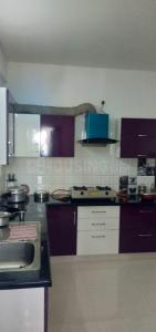 Gallery Cover Image of 1300 Sq.ft 2 BHK Apartment for rent in Kasturi Nagar for 20000