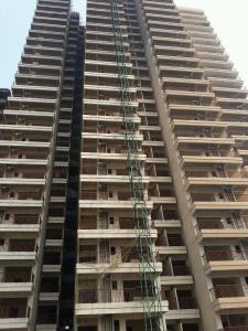 Gallery Cover Image of 1375 Sq.ft 3 BHK Apartment for buy in Yeida for 4540000