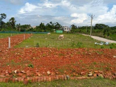 3600 Sq.ft Residential Plot for Sale in Rajarhat, Kolkata
