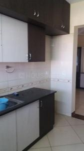 Gallery Cover Image of 1850 Sq.ft 3 BHK Apartment for rent in Sobha Daffodil , HSR Layout for 38000
