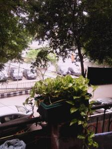 Balcony Image of Friends PG in Sant Nagar