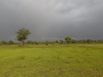 Gallery Cover Image of  Sq.ft Residential Plot for buy in Nandore for 551000