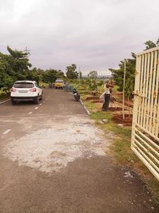 200 Sq.ft Residential Plot for Sale in Diwancheruvu, Rajahmundry
