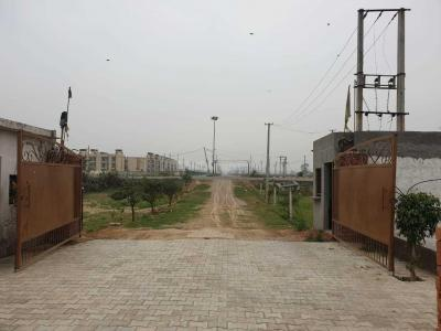 Gallery Cover Image of 100 Sq.ft Residential Plot for buy in Sector 79 for 140000