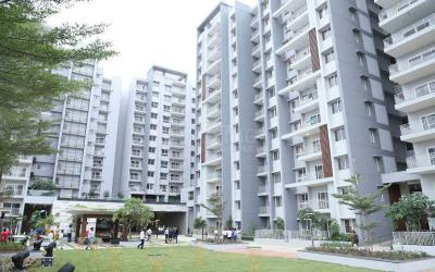 Gallery Cover Image of 1220 Sq.ft 3 BHK Apartment for rent in Bellandur for 65000