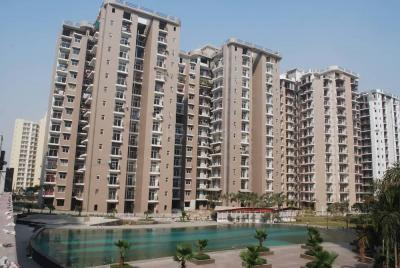 Gallery Cover Image of 800 Sq.ft 2 BHK Apartment for rent in Sector 117 for 8000