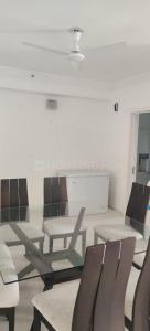 Gallery Cover Image of 2950 Sq.ft 4 BHK Apartment for buy in DLF The Belaire, Sector 54 for 38000000
