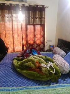 Gallery Cover Image of 625 Sq.ft 1 BHK Apartment for rent in Malad West for 27000