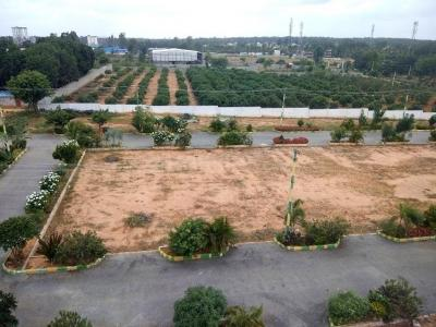 Gallery Cover Image of  Sq.ft Residential Plot for buy in Hoskote for 2160000