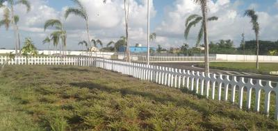 Gallery Cover Image of  Sq.ft Residential Plot for buy in Perumbakkam for 37500000
