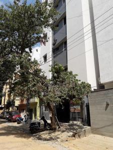 न्यू थिप्पसंदरा में श्री श्रीनिवासा पीजी में बिल्डिंग की तस्वीर