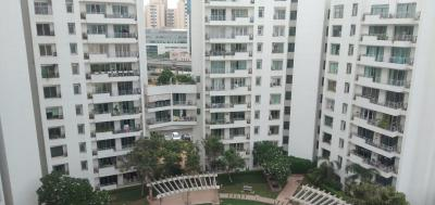 Gallery Cover Image of 2895 Sq.ft 3 BHK Apartment for buy in Parsvnath Exotica, Sector 53 for 32500000