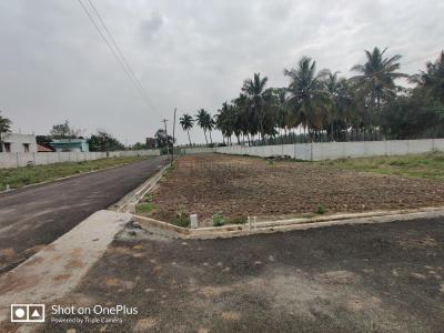 Gallery Cover Image of 1440 Sq.ft Residential Plot for buy in Nehru Nagar West for 3900000