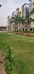 Gallery Cover Image of 3375 Sq.ft 3 BHK Apartment for buy in Science City for 14000000
