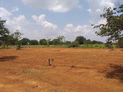 9585 Sq.ft Residential Plot for Sale in Gollapalle Kalan, Hyderabad