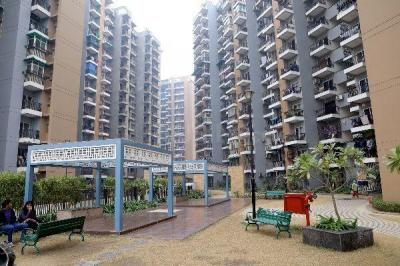 Gallery Cover Image of 1505 Sq.ft 3 BHK Apartment for buy in Saviour Park, Rajendra Nagar for 6500000