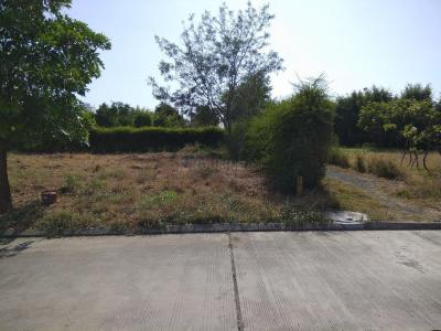 Gallery Cover Image of  Sq.ft Residential Plot for buy in Pipliyahana for 30225000