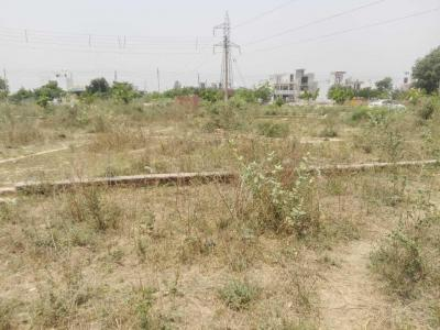 4500 Sq.ft Residential Plot for Sale in Sector 64, Faridabad