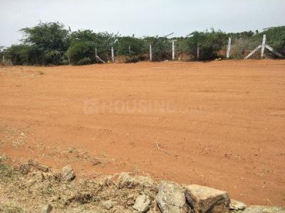 Gallery Cover Image of  Sq.ft Residential Plot for buy in Tatabad for 250000