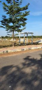 200 Sq.ft Residential Plot for Sale in Shamshabad, Hyderabad