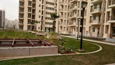 Gallery Cover Image of 1250 Sq.ft 3 BHK Apartment for buy in BPTP Park Elite Premium, Sector 84 for 4300000