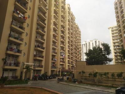 Gallery Cover Image of 1050 Sq.ft 2 BHK Apartment for rent in  The Essentia, Milakpur Goojar for 7500