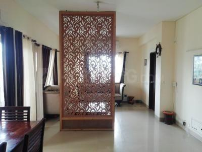 Gallery Cover Image of 2000 Sq.ft 4 BHK Apartment for rent in DLF Belvedere Park, DLF Phase 3 for 80000