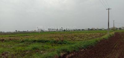 Gallery Cover Image of 500 Sq.ft Residential Plot for buy in Tadigadapa for 6500000