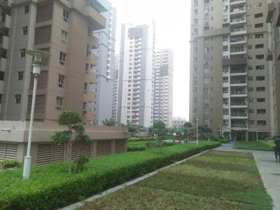 Gallery Cover Image of 1180 Sq.ft 2 BHK Apartment for rent in Sector 100 for 17000