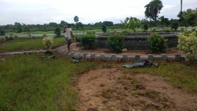 165 Sq.ft Residential Plot for Sale in Diwancheruvu, Rajahmundry
