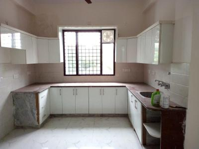 Gallery Cover Image of 1450 Sq.ft 2 BHK Independent House for rent in Sector 41 for 14000