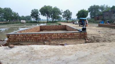 445 Sq.ft Residential Plot for Sale in Najafgarh, New Delhi