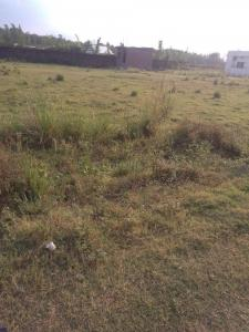 Gallery Cover Image of 2100 Sq.ft Residential Plot for buy in Clement Town for 5825000
