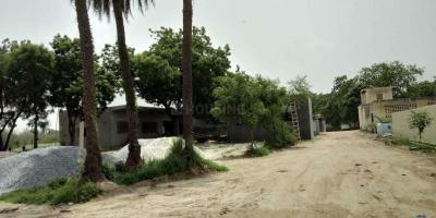1350 Sq.ft Residential Plot for Sale in Sector 140A, Noida