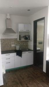Gallery Cover Image of 900 Sq.ft 1 RK Apartment for rent in Greater Kailash for 45000