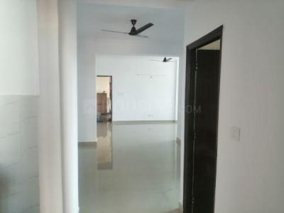 Passage Image of PG 5080470 Pi in PI Greater Noida