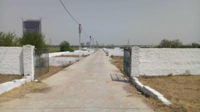 1080 Sq.ft Residential Plot for Sale in Sector 135, Noida