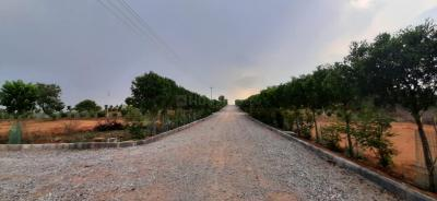 1308 Sq.ft Residential Plot for Sale in Mazidpur, Hyderabad
