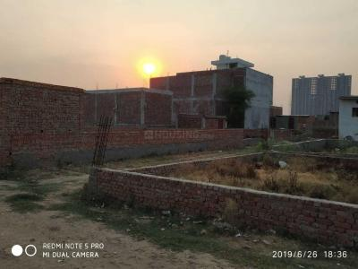 Gallery Cover Image of  Sq.ft Residential Plot for buy in Sector 81 for 1050000