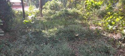 3480 Sq.ft Residential Plot for Sale in Kannur, Kannur