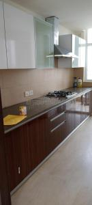 Gallery Cover Image of 2250 Sq.ft 3 BHK Apartment for rent in Sector 110A for 30000