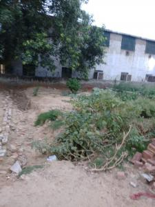720 Sq.ft Residential Plot for Sale in Sector 3A, Gurgaon