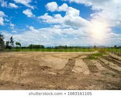 Gallery Cover Image of 450 Sq.ft Residential Plot for buy in Sector 25 for 650000