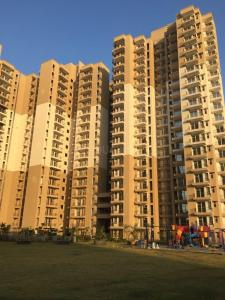 Gallery Cover Image of 1250 Sq.ft 3 BHK Apartment for rent in Gaursons Hi Tech 12th Avenue, Noida Extension for 9000