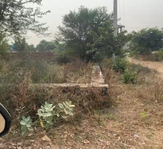 Gallery Cover Image of  Sq.ft Residential Plot for buy in Ashok Nagar for 40400000