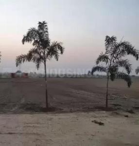 15000 Sq.ft Residential Plot for Sale in Phase 2, Noida