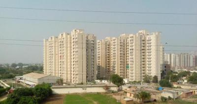 Gallery Cover Image of 1600 Sq.ft 3 BHK Apartment for rent in Sector 86 for 15500