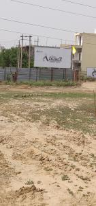 Gallery Cover Image of 444 Sq.ft 2 BHK Apartment for buy in Adore Ananda, Sector 64 for 1900000